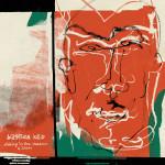 Bastien Keb - Dinking In The Shadows Of Zizou - Artwork