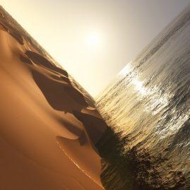 Mark Pritchard 'Under The Sun'