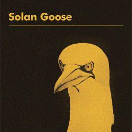Erland Cooper 'Solan Goose'